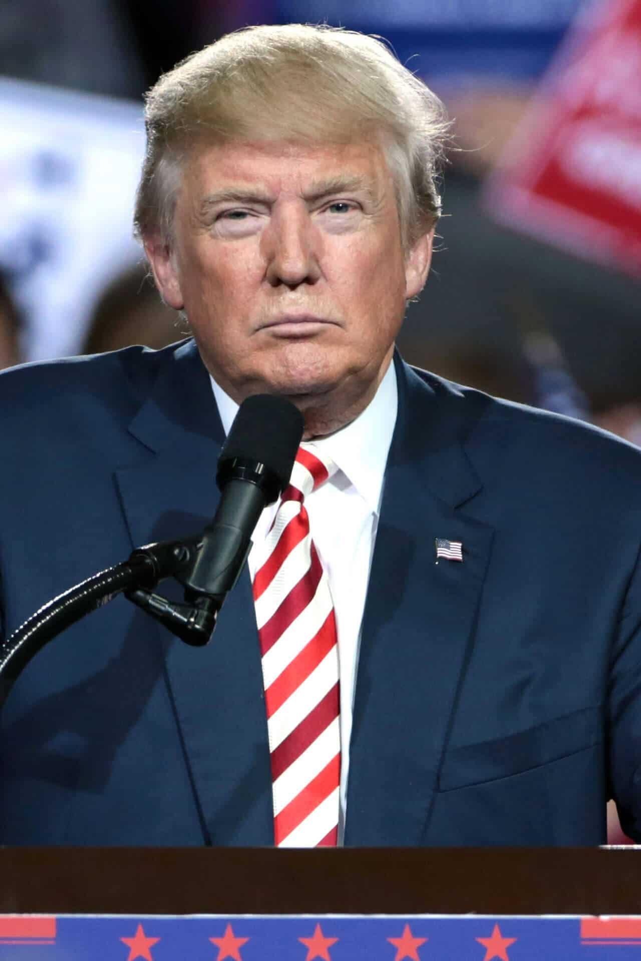 Donald Trump elezioni 2020 strategia social