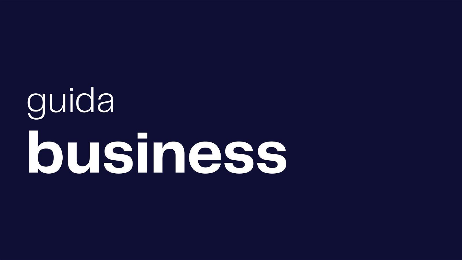 guida business